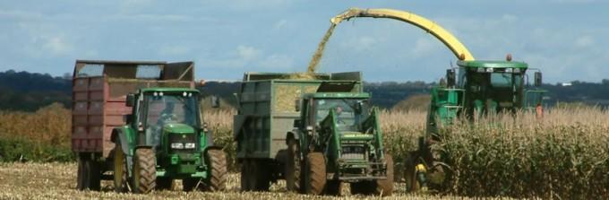 Acopio de cosechas de maíz y sorgo